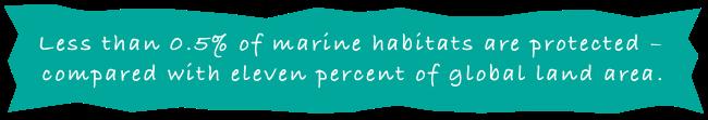 Marine Banner_New